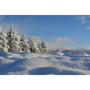 DAILY SKI TOUR IN KARTEPE FROM ISTANBUL